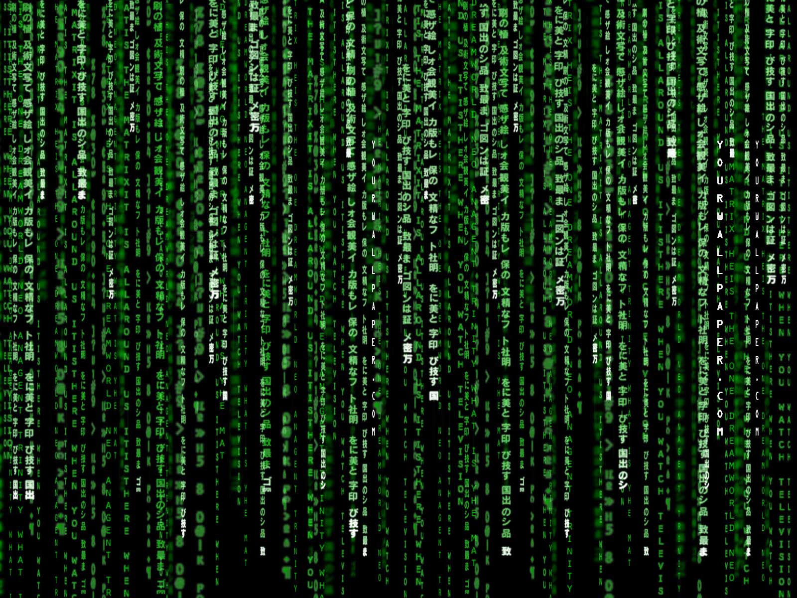 Movie The Matrix Neo Wallpaper