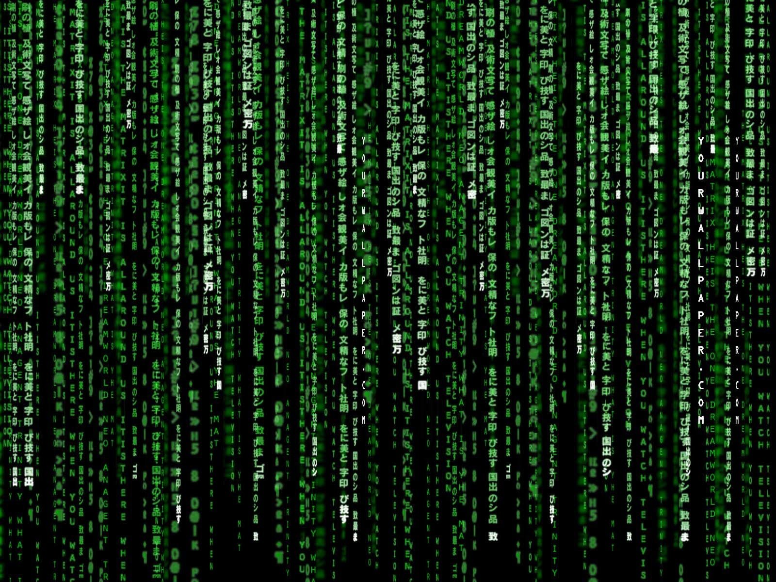Matrix Wallpaper Hd - WallpaperSafari