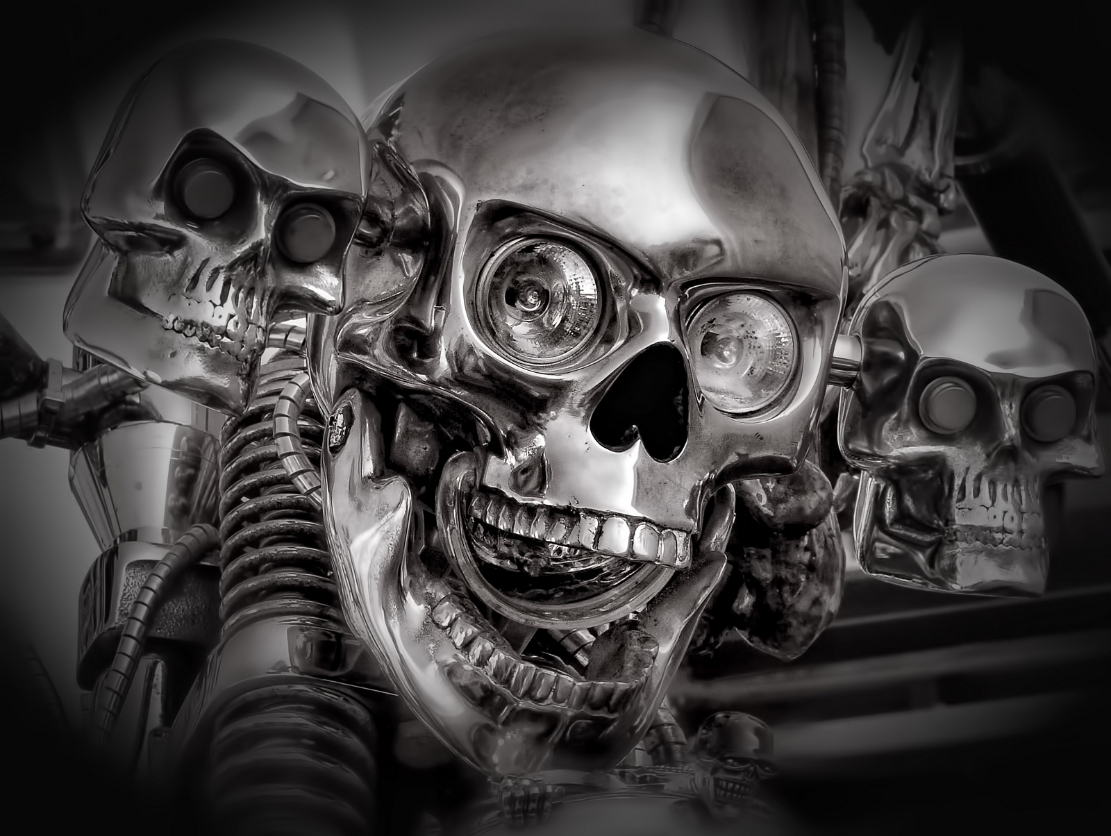 Skull Wallpaper And Background Image 1600x1204 Id 273224