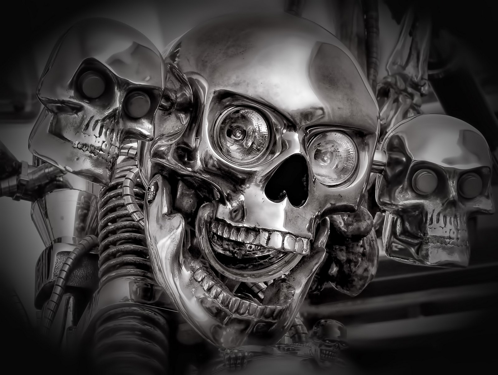 skull wallpaper and background image 1600x1204 id273224