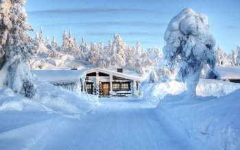 Photography - Winter Wallpapers and Backgrounds ID : 273418