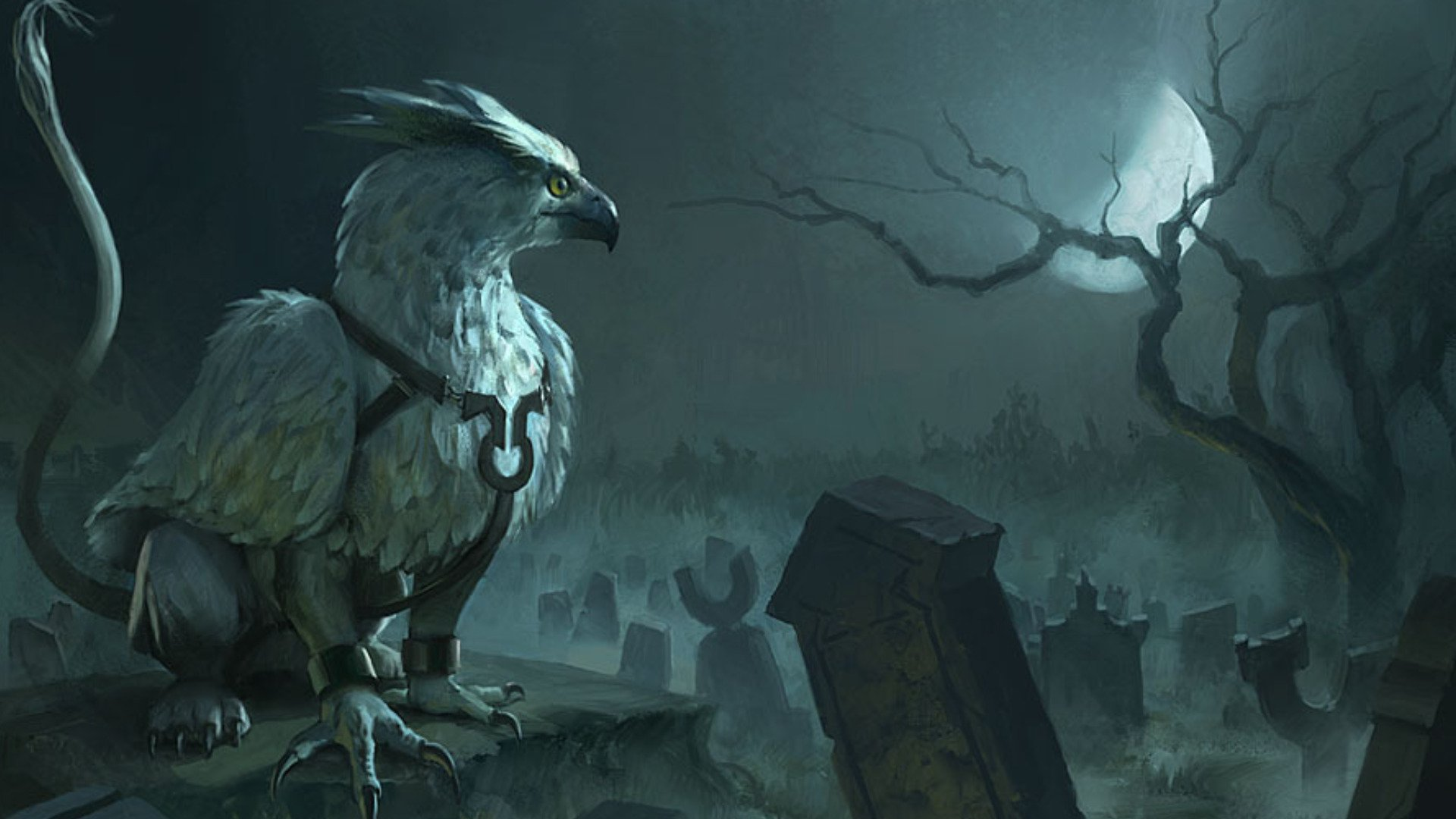 Griffin full hd wallpaper and background image 1920x1080 for The griffin