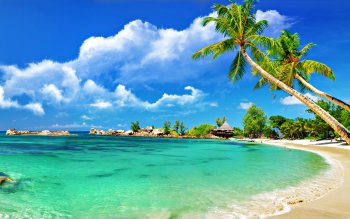 Fotografie - Tropical Wallpapers and Backgrounds ID : 274234