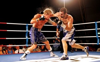 Sports - Boxing Wallpapers and Backgrounds ID : 275768