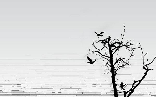 Oscuro Animales Oculto Fondo de pantalla HD | Fondo de Escritorio