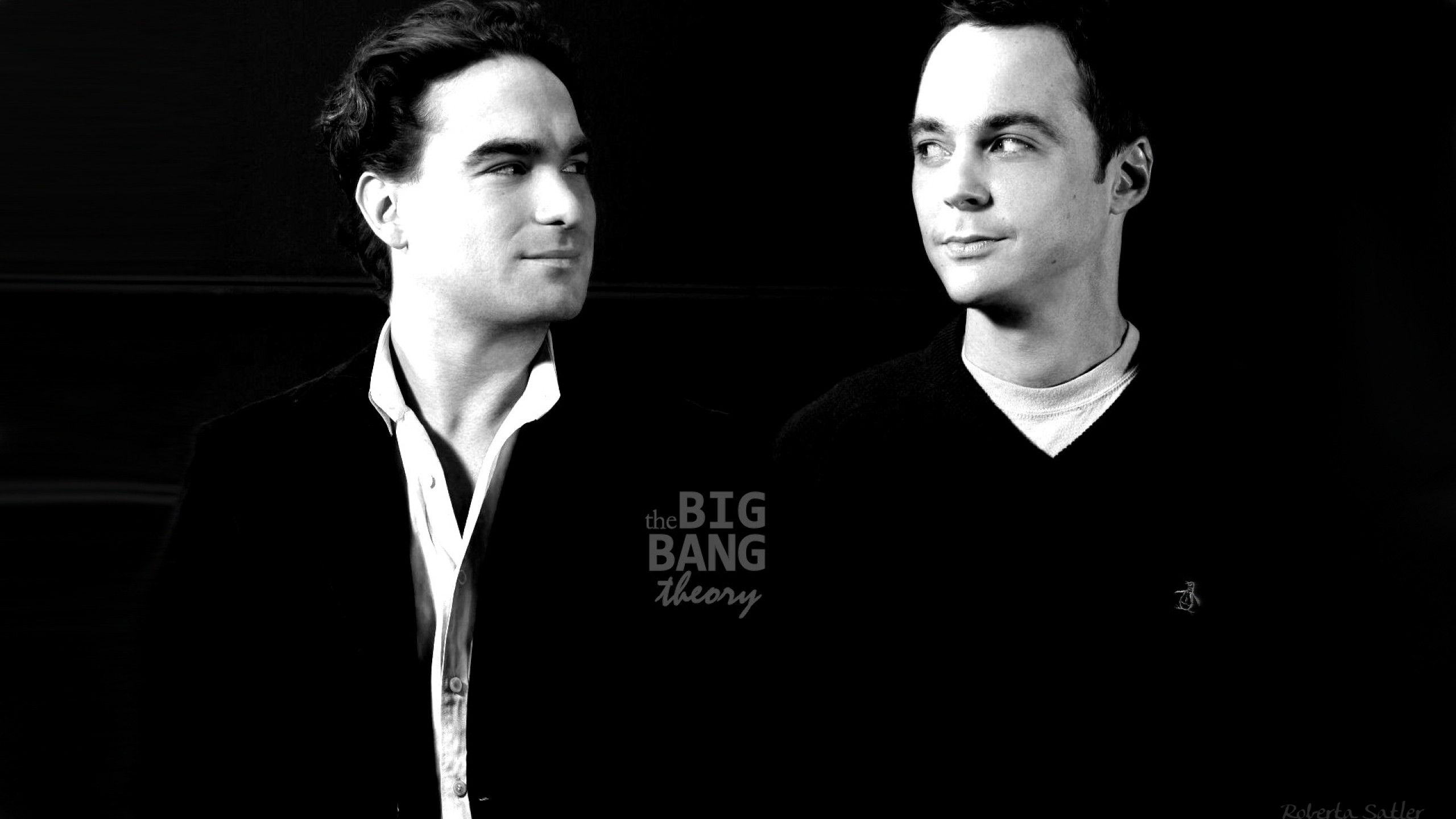the big bang theory hd wallpaper | background image | 2560x1440 | id