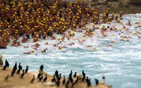 Photography People Tilt Shift Swimming HD Wallpaper | Background Image