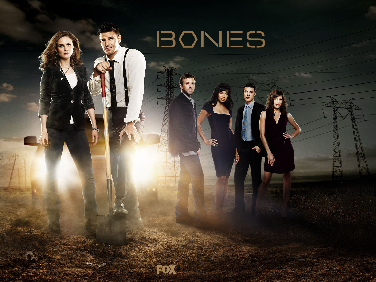 Bones Wallpaper And Background Image