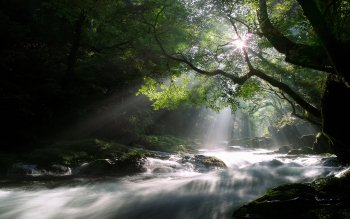 Earth - Stream Wallpapers and Backgrounds ID : 284186