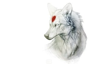 Animal - Wolf Wallpapers and Backgrounds ID : 284964