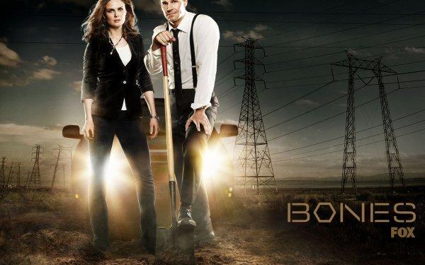 TV Show Bones Temperance Brennan Emily Deschanel Seeley Booth David Boreanaz HD Wallpaper | Background Image