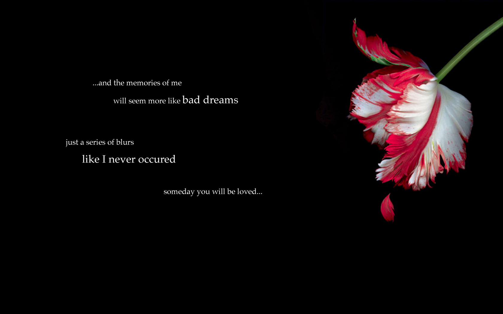 Emo Love Wallpaper For Pc : Emo Wallpaper and Background Image 1680x1050 ID:285426