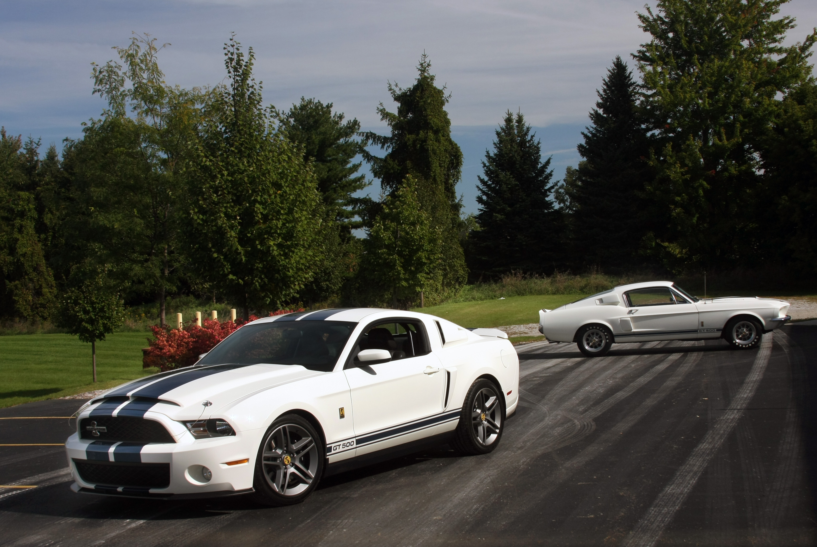 1967 Shelby Gt500 Amp 2010 Shelby Gt500 Patriot Edition Full