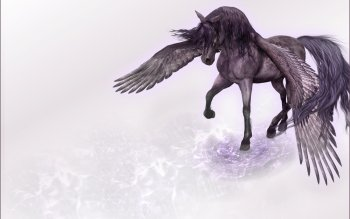 Fantasy - Pegasus Wallpapers and Backgrounds ID : 288594