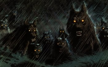 Donker - Werewolf Wallpapers and Backgrounds ID : 288678