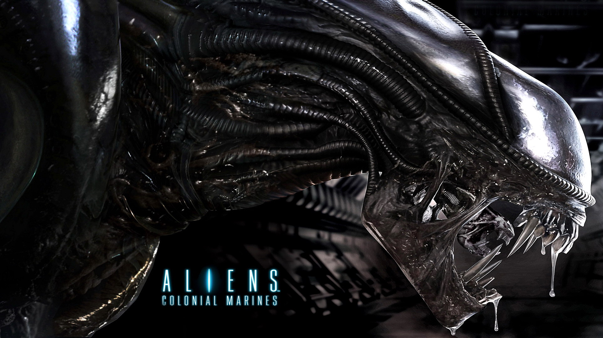 53 aliens colonial marines hd wallpapers backgrounds