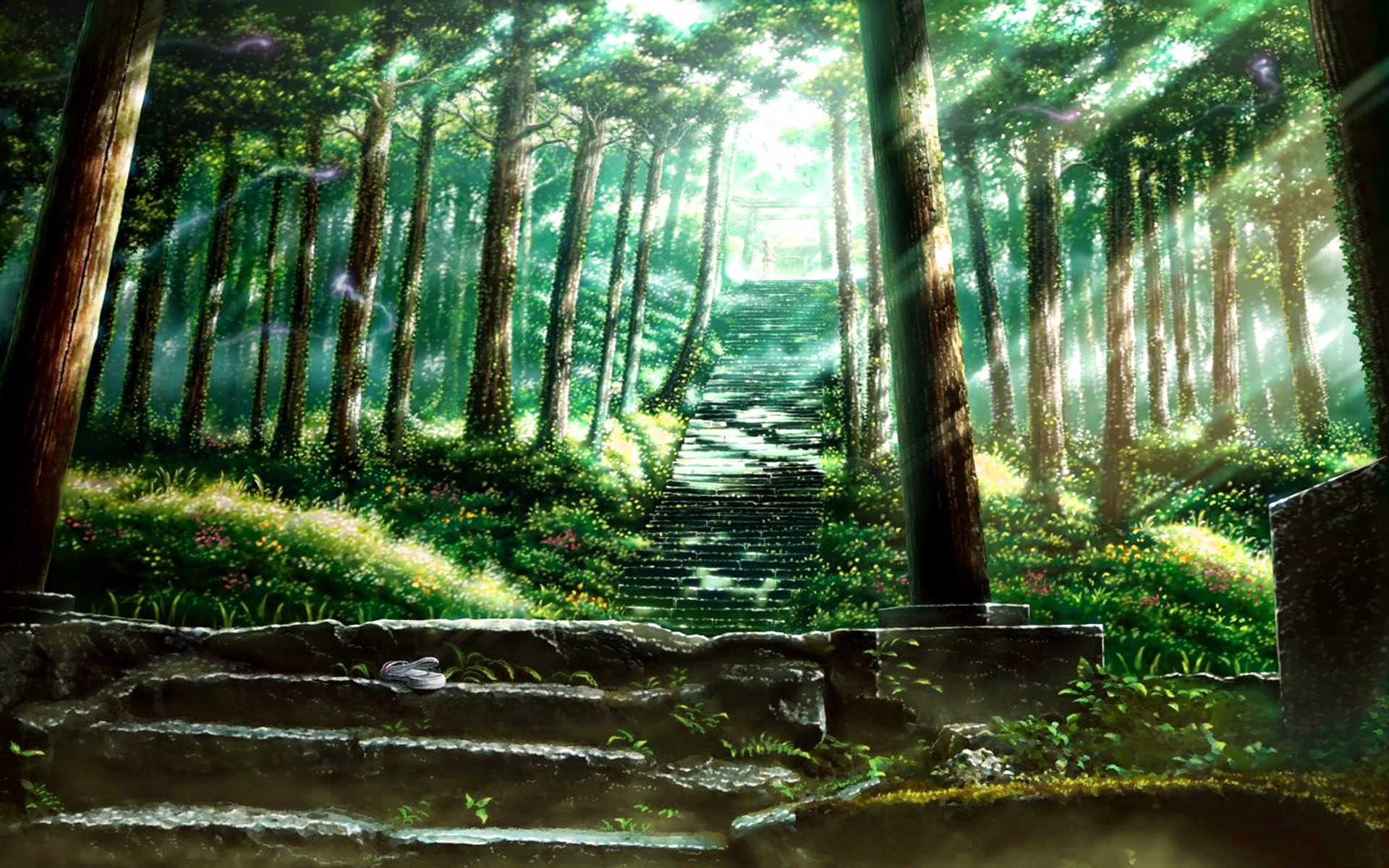 Simple Wallpaper Forest Totoro - 294694  Perfect Image Reference_219419 .jpg
