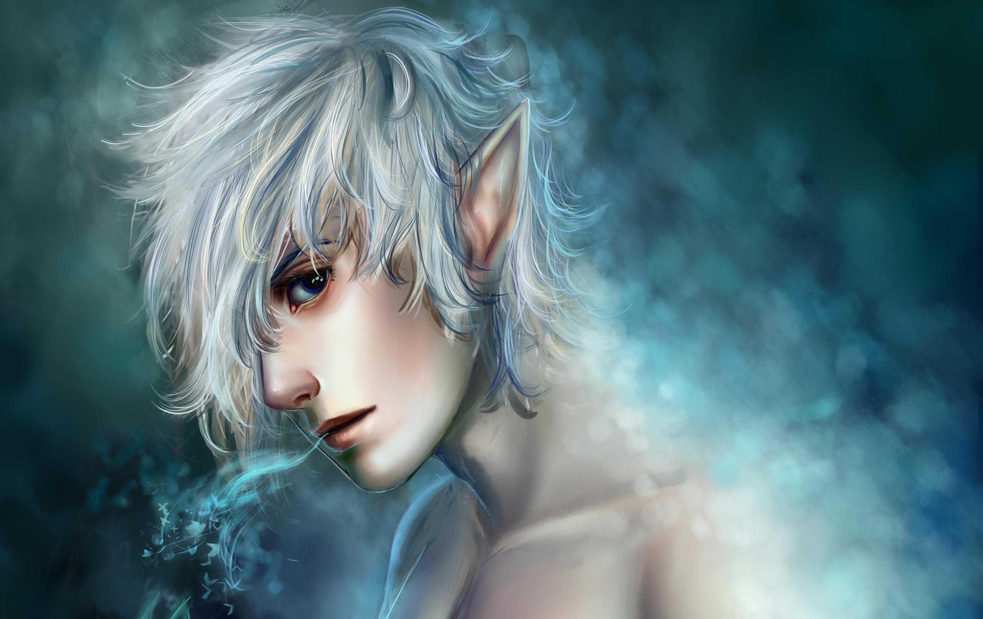 Fantasy Art Elves Wallpapers Hd Desktop And Mobile: Background Image