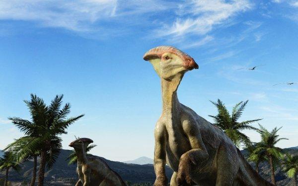 Animal Dinosaur Extinct Wildlife HD Wallpaper | Background Image