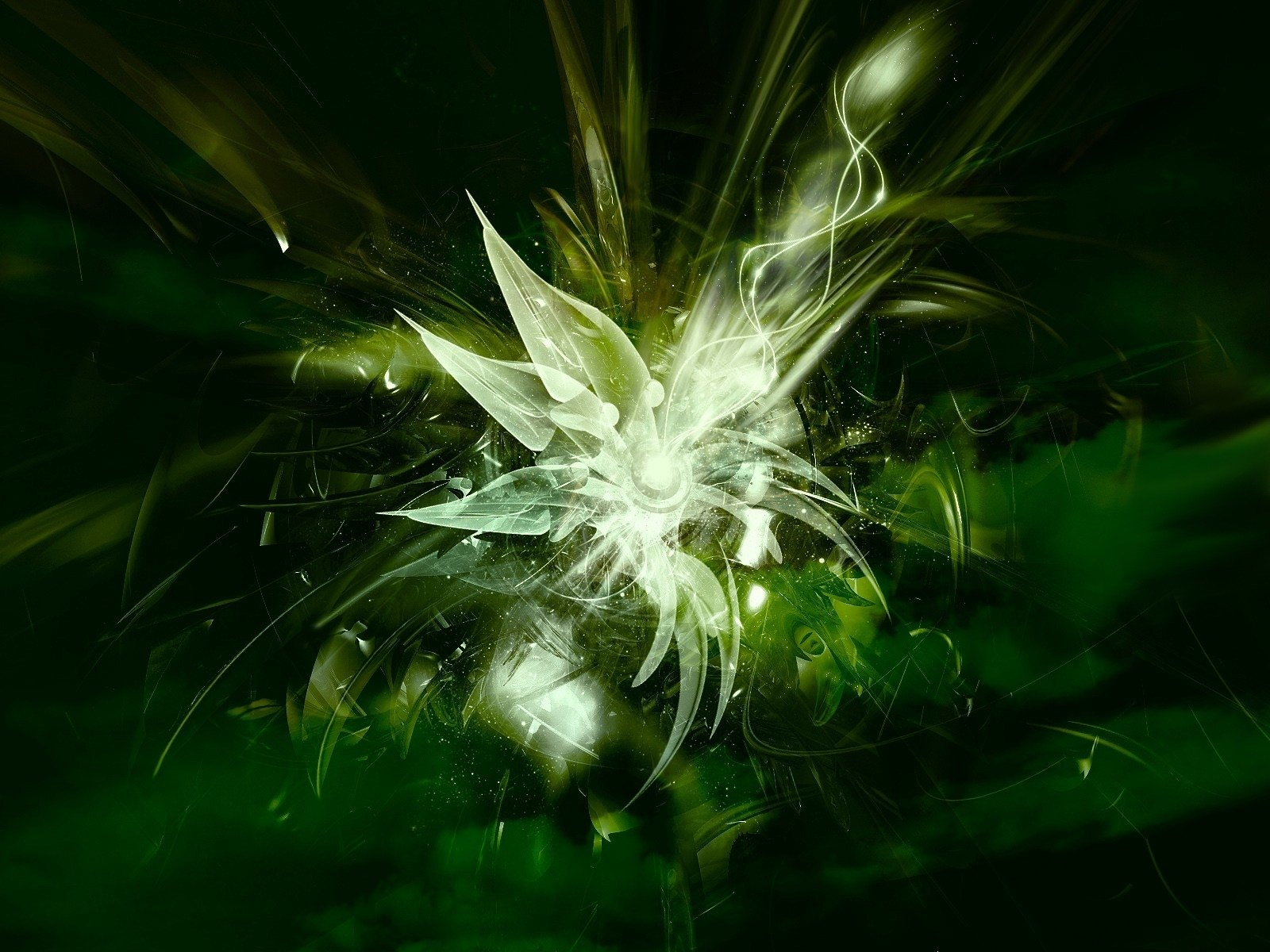 Abstract - Green  Texture Abstract Wallpaper