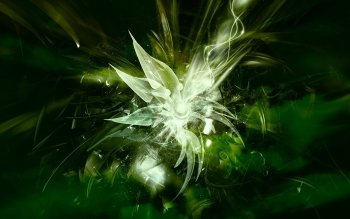 Abstract - Green Wallpapers and Backgrounds ID : 31276