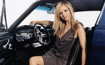 Berühmte Personen - Sarah Michelle Gellar Wallpapers and Backgrounds ID : 33818
