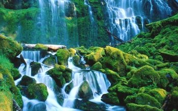 Earth - Waterfall Wallpapers and Backgrounds ID : 37858