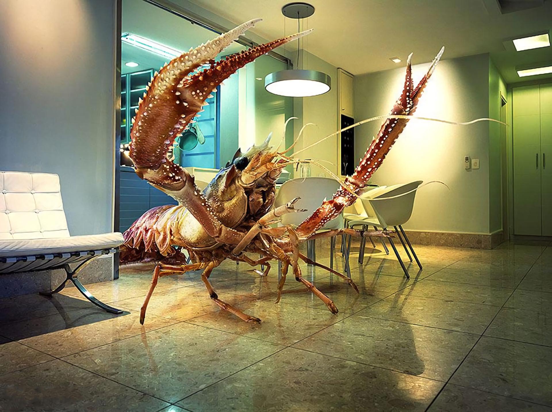 Fantasy - Sea Monster  Lobster Light Chair Wallpaper