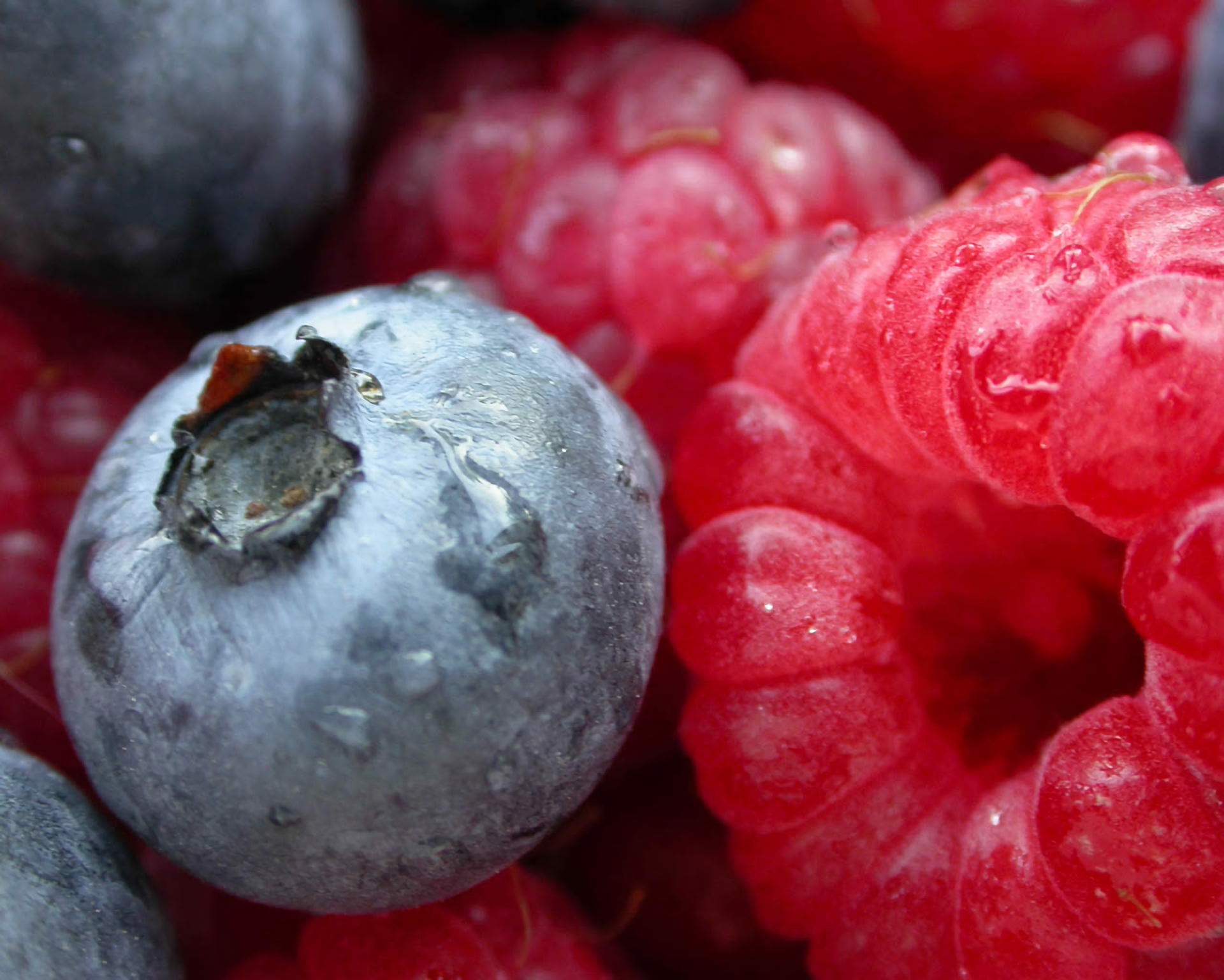 Food - Berry  Raspberry Blueberry Fruit Wallpaper