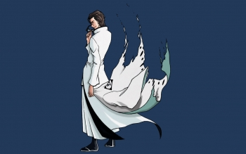 Anime - Bleach Wallpapers and Backgrounds ID : 47466