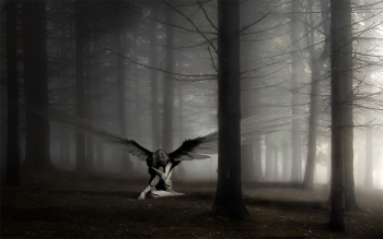 Dark - Angel Wallpapers and Backgrounds ID : 47996