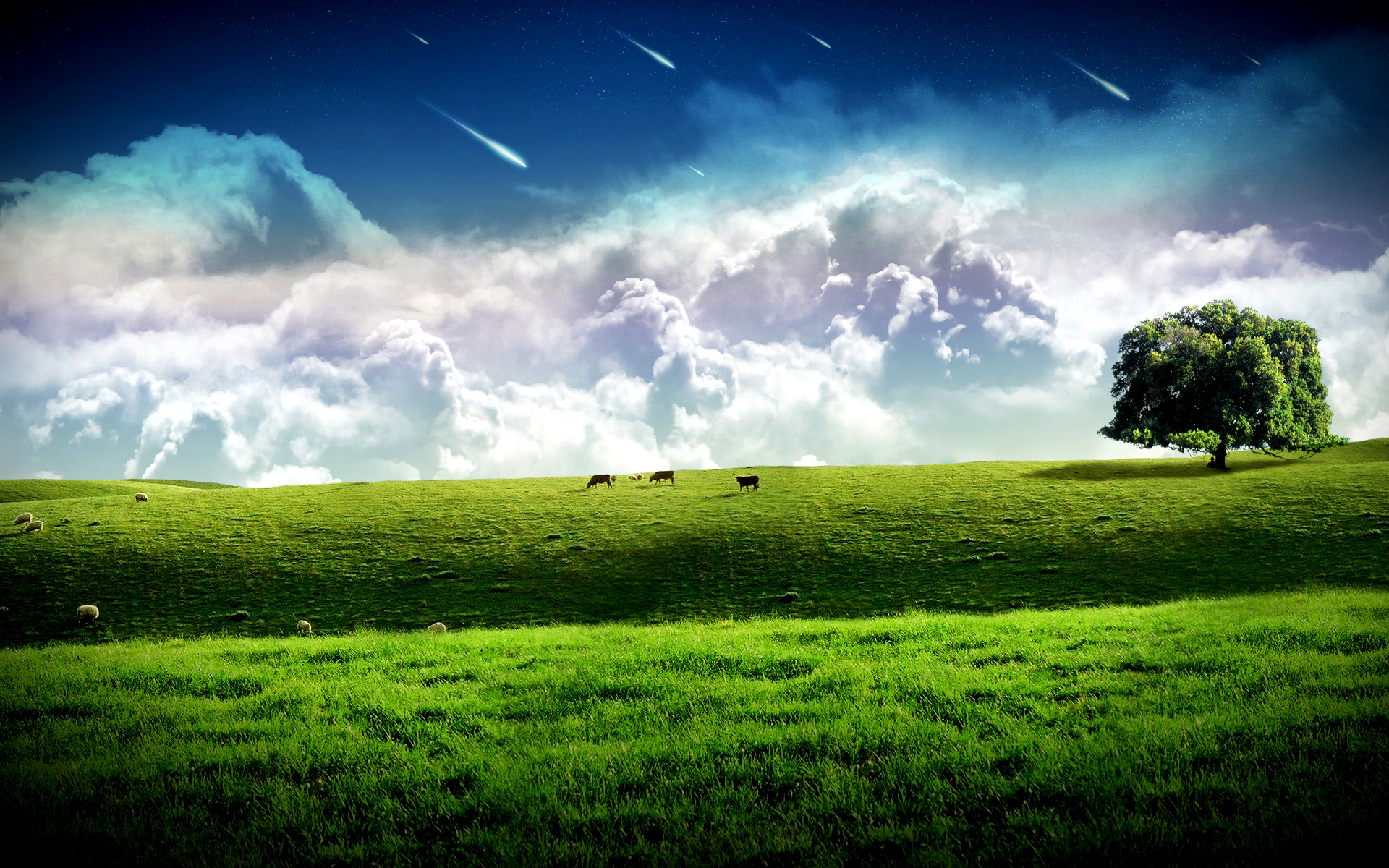 Earth - Artistic  Field Wallpaper