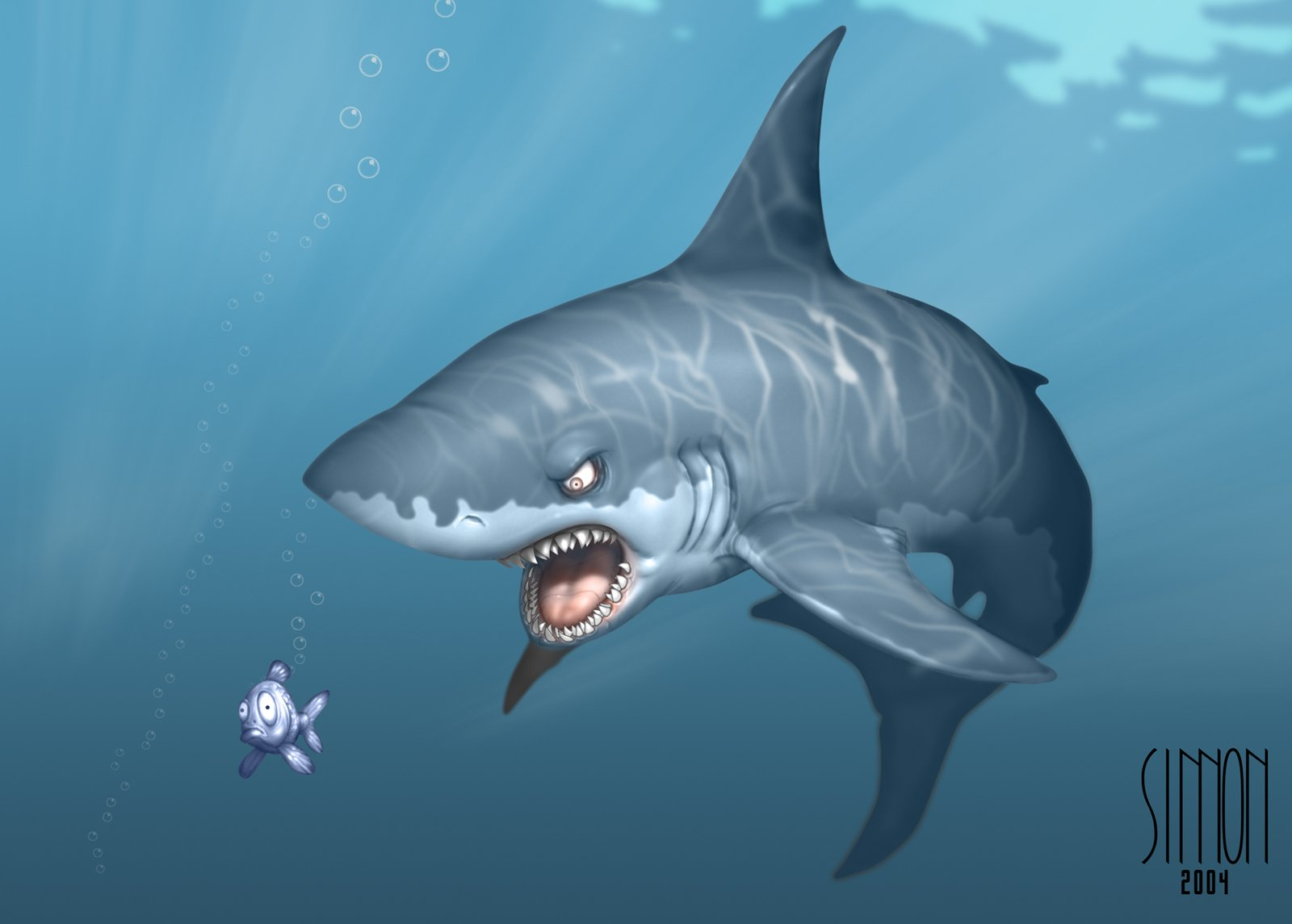 Animal - Shark  Cartoon Humor Funny Wallpaper