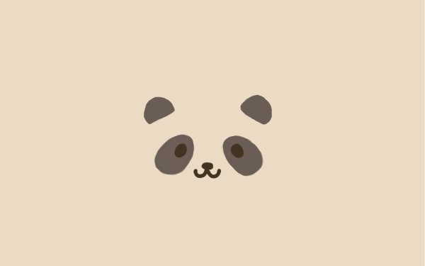 Humor Funny Panda Bear HD Wallpaper | Background Image