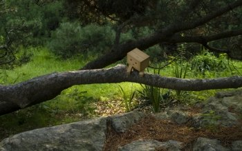 Diversen - Danbo Wallpapers and Backgrounds ID : 54784
