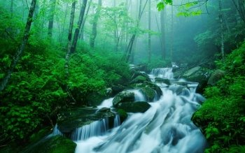 Earth - Stream Wallpapers and Backgrounds ID : 5506