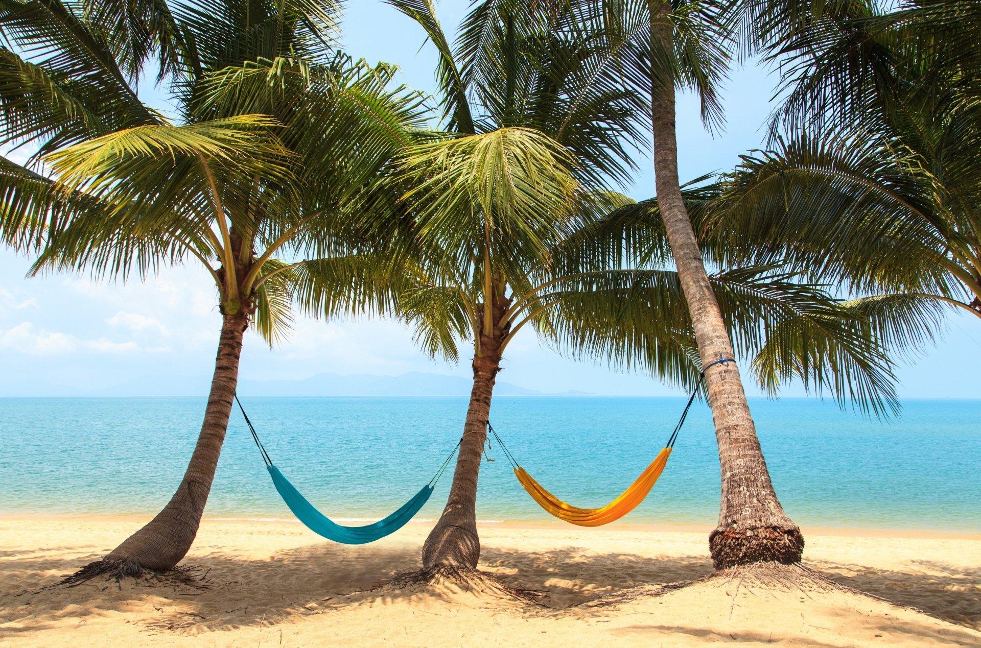 Construction Humaine - Hammock Tropics Palmier Plage Vacances Resting ...