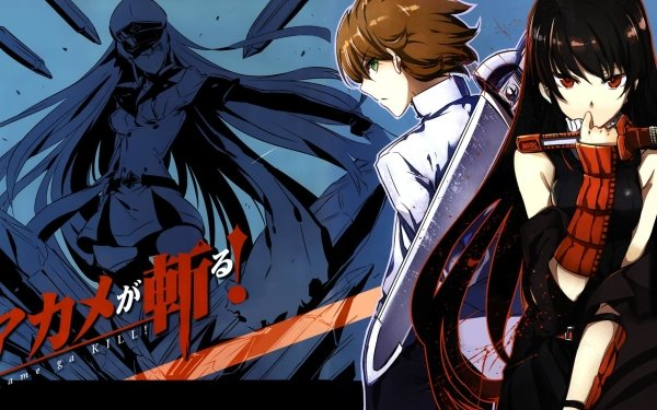 Anime Akame ga Kill! Akame Esdeath Tatsumi HD Wallpaper | Background Image