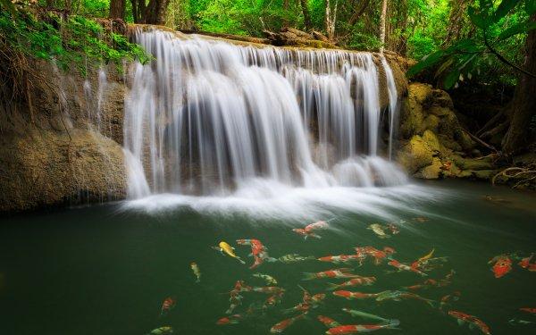 Earth Waterfall Waterfalls Fish Thailand Erawan Waterfall Erawan National Park HD Wallpaper | Background Image