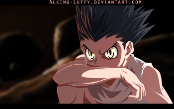 202 Hunter x Hunter HD Wallpapers | Background Images