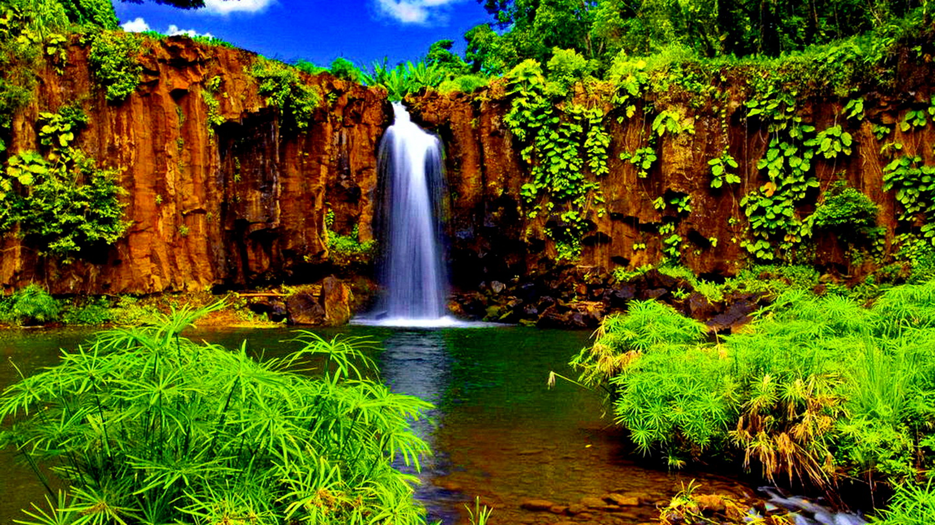Tropical Waterfall Full HD Wallpaper And Background Image