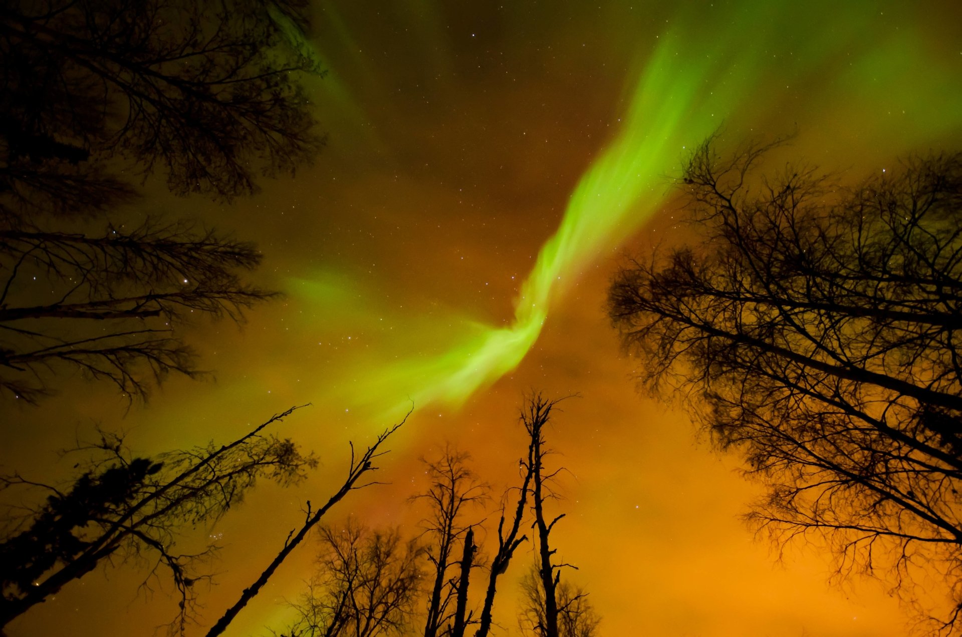 Earth - Aurora Borealis  Wallpaper