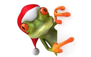 Search photos frog cartoon  Fotolia