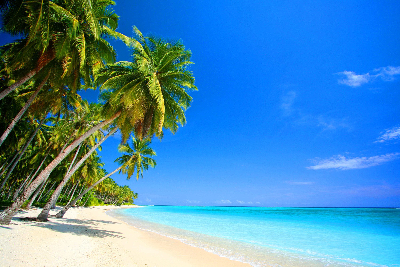 De Bleu Cayman Islands