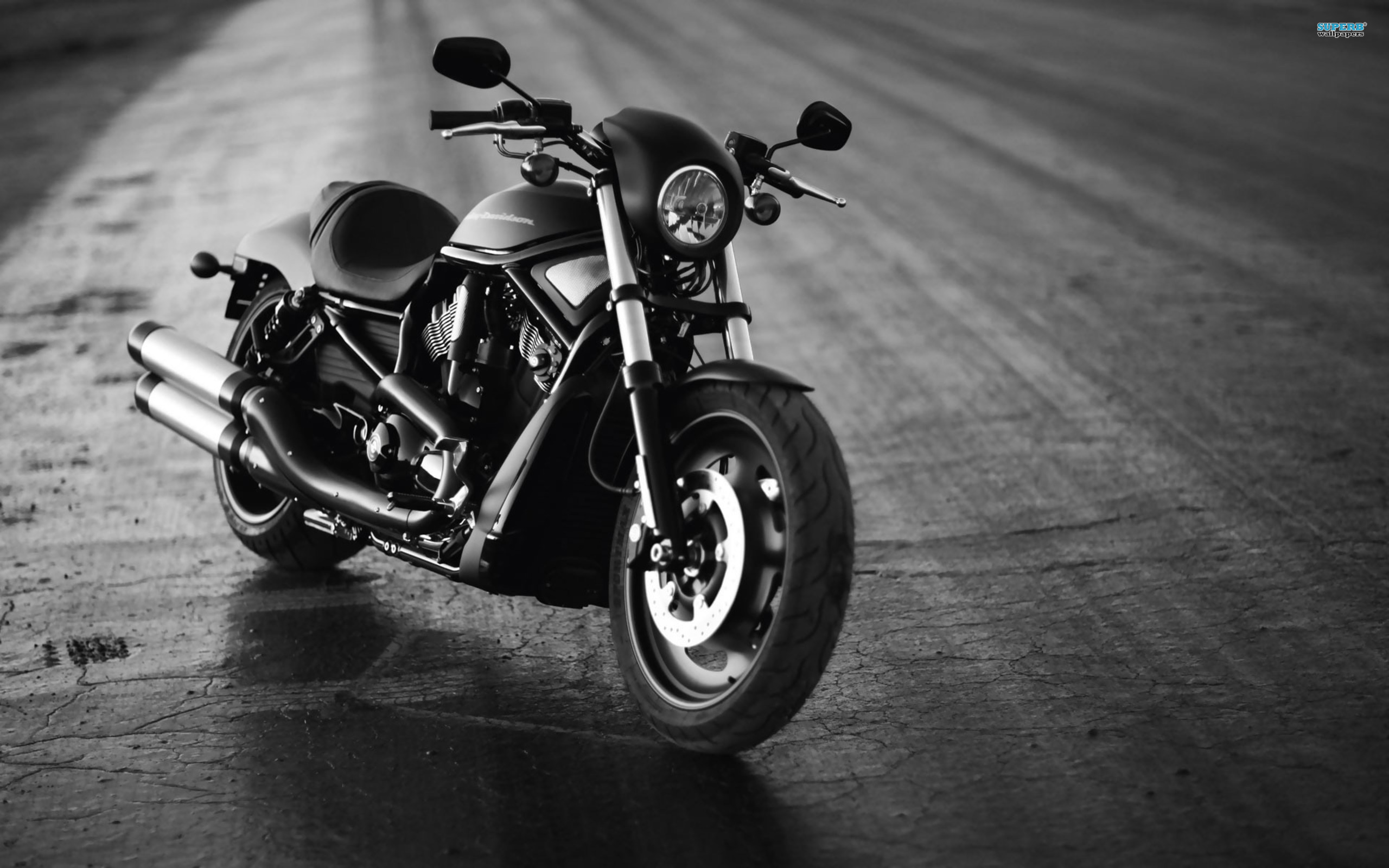 harley-davidson full hd wallpaper and background image | 2560x1600