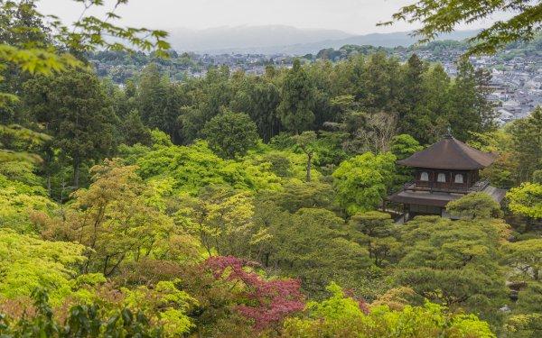 Religious Jishō-ji Temples Temple of Shining Mercy Ginkaku-Ji Kyoto Temple Japan Zen Garden HD Wallpaper   Background Image