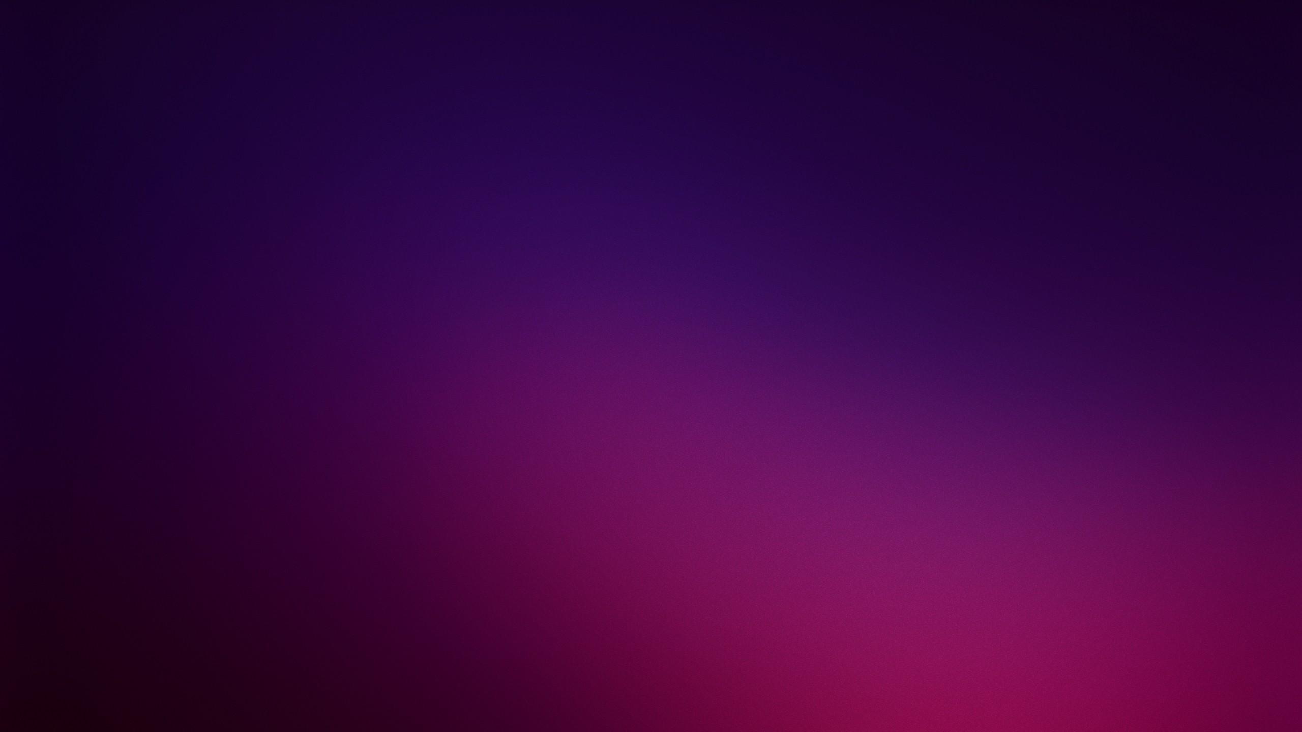 Purple Hd Wallpaper Background Image 2560x1440 Id592367