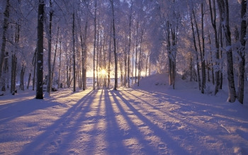 Earth - Winter Wallpapers and Backgrounds ID : 59328