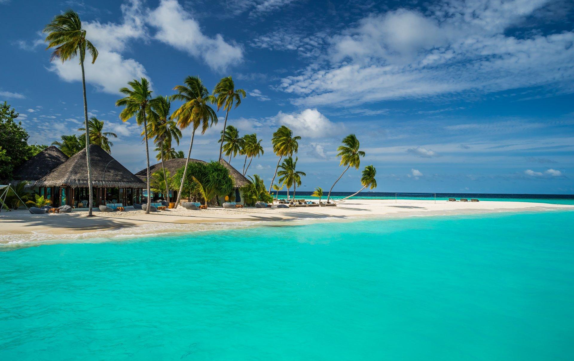 Photography - Tropical  Resort Sky Lagoon Sea Palm Tree Seaside Tropics Constance Halaveli Resort Maldives Wallpaper