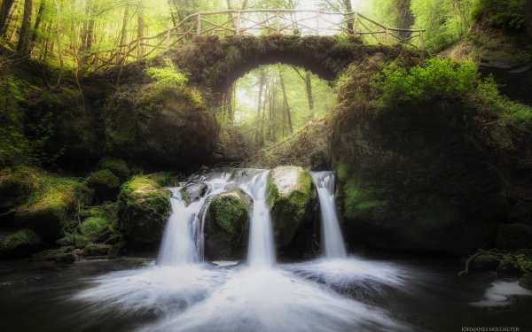 Earth Forest Bridge Waterfall Nature Landscape Muellerthal Luxembourg HD Wallpaper | Background Image